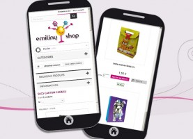 Site Web e-commerce responsive Prestashop